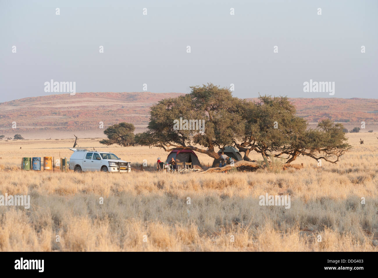 Camper vehicle and tents under trees, Sesriem campsite, Khomas region, Namibia - Stock Image