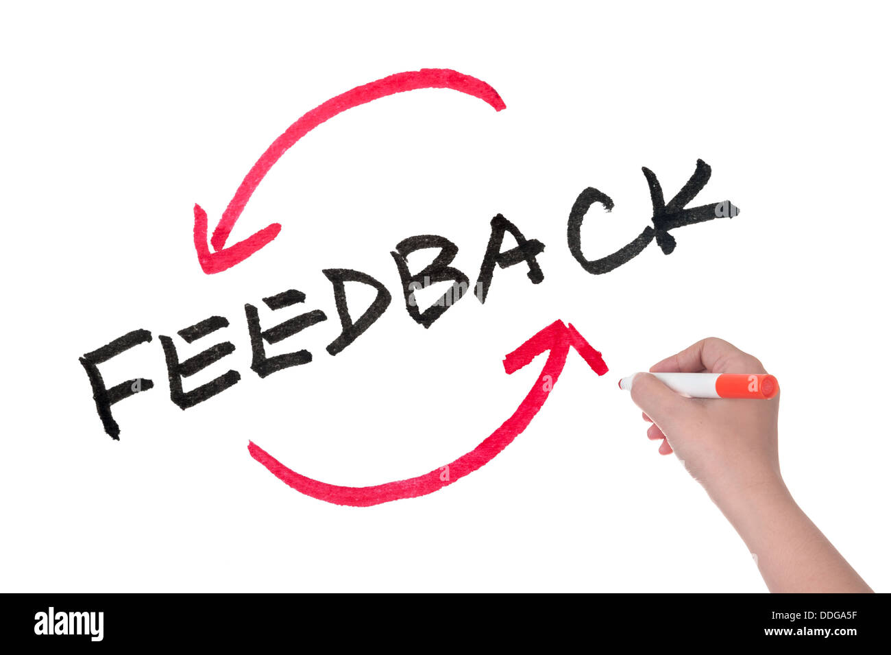 Feedback concept words written on white board - Stock Image