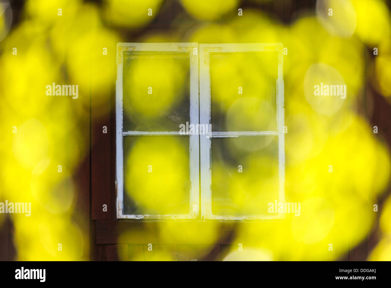 Window with abstract yellow pattern, Munkfors, Värmland, Sweden - Stock Image