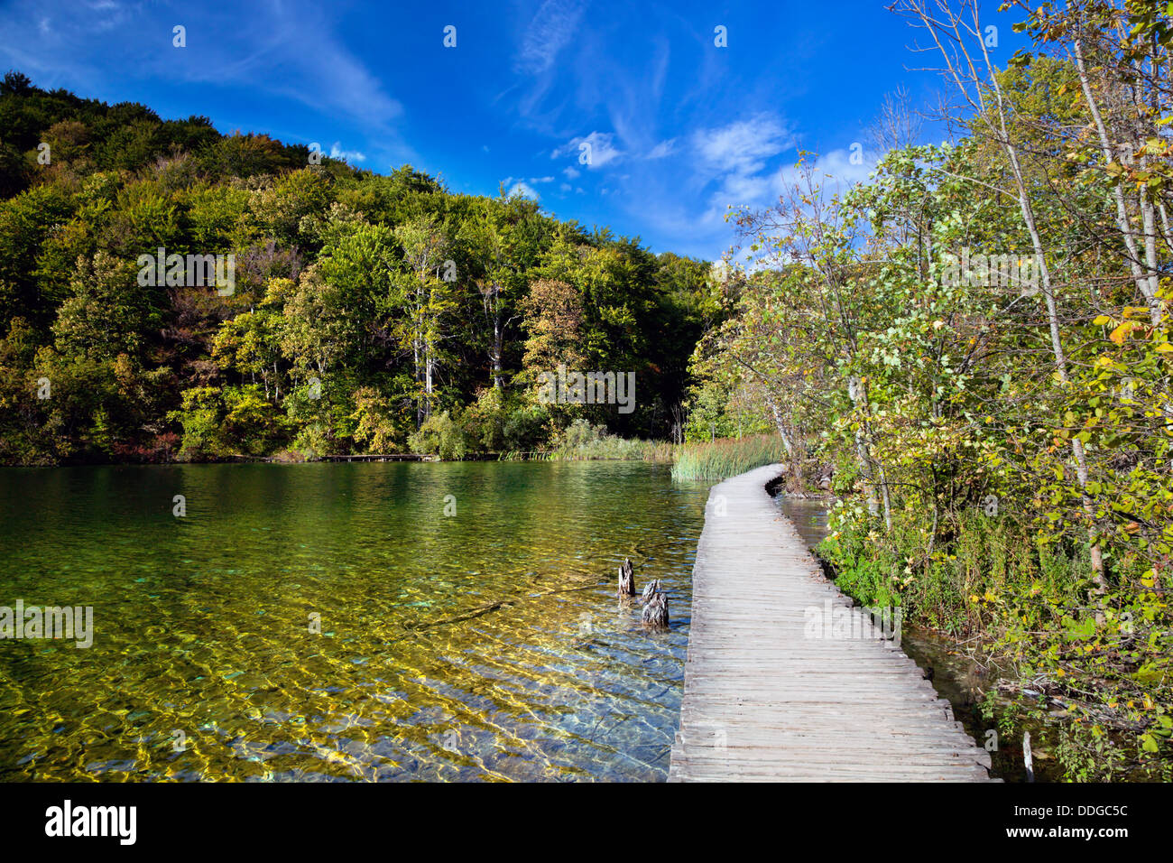 Lake in forest. Crystal clear water. Plitvice Lakes National Park, Croatia - Stock Image