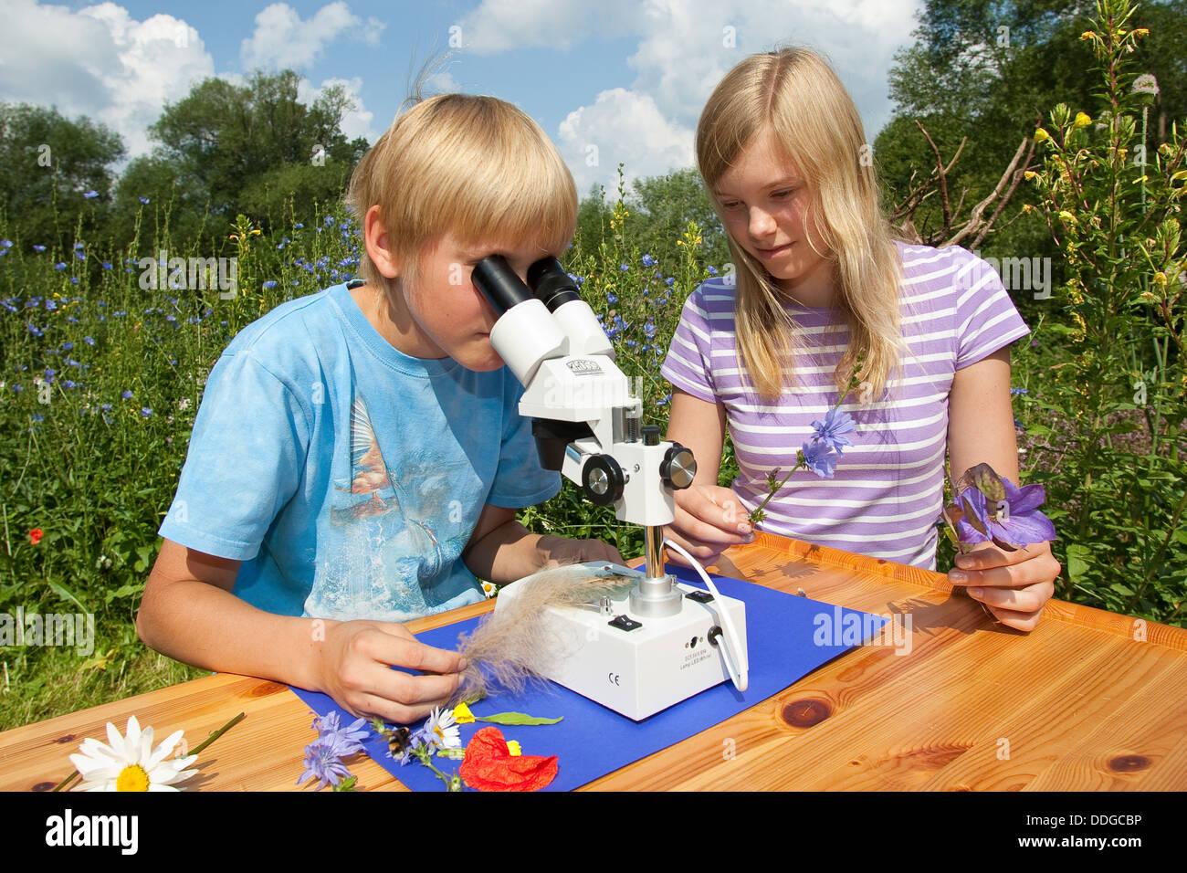 Child, children, binocular loupe, magnifier, Kind, Mädchen, Kinder, Binokular, Stereolupe, Naturerlebnis, Nature experience Stock Photo