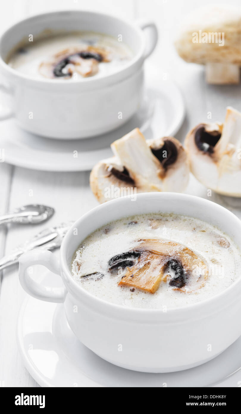 Creamy white mushroom soup served in two white bowls - Stock Image