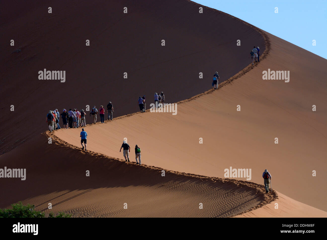 Tourists during the ascent of the 'Big Daddy' or 'Crazy Dune' sand dune - Stock Image