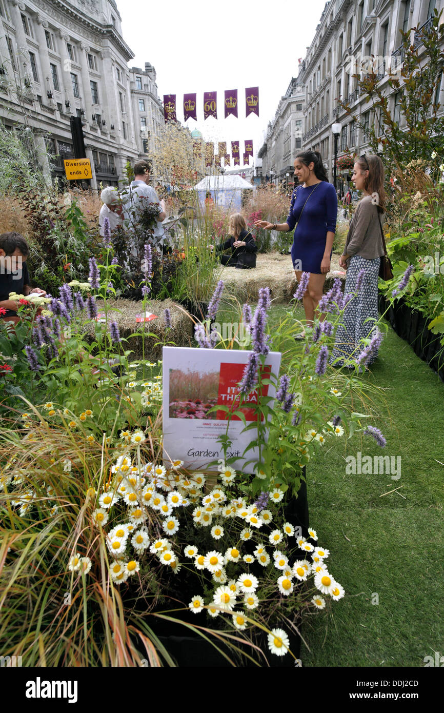 Pedestrians admiring a small bee-friendly garden created in Regent Street on 28 August 2013 when it was closed to traffic. - Stock Image