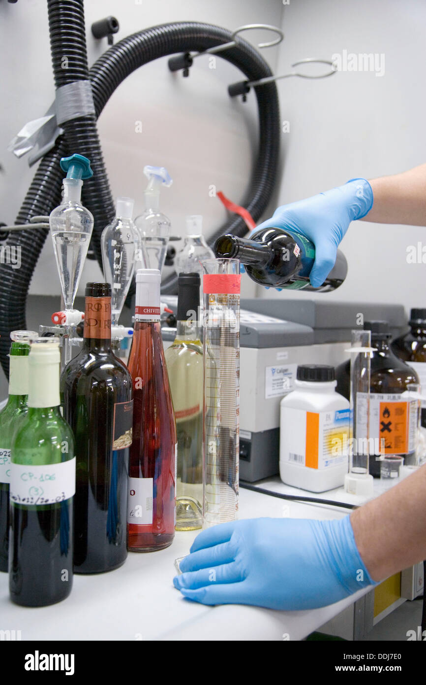 Physics and chemistry laboratory. Tests for polluting agents in wine. AZTI-Tecnalia. Technological Centre specialised in Marine - Stock Image