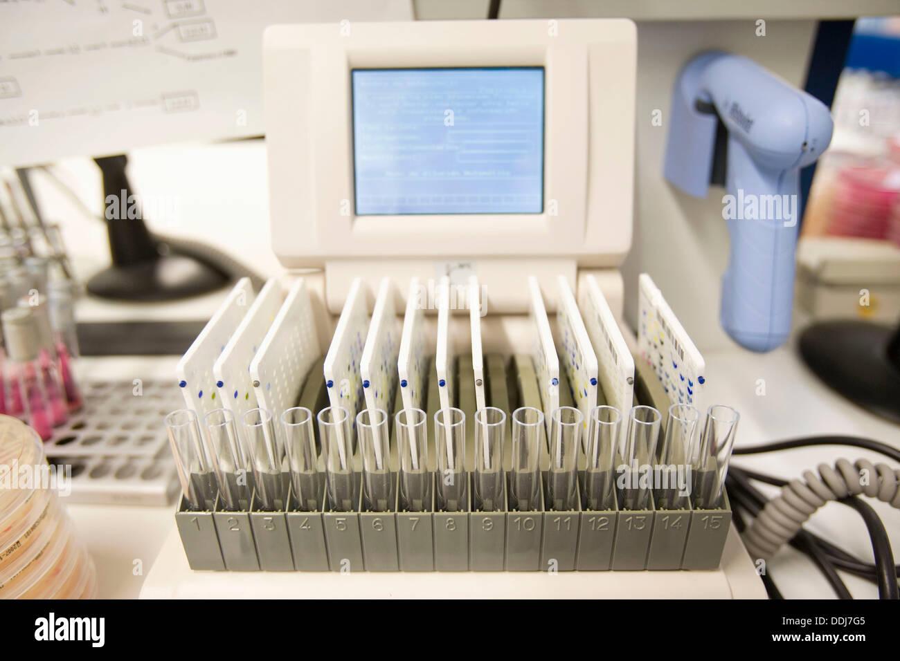 VITEK automated bacteriology system, Laboratory of Diagnosis, Departamento de Producción y Sanidad Animal, Neiker Tecnalia, - Stock Image