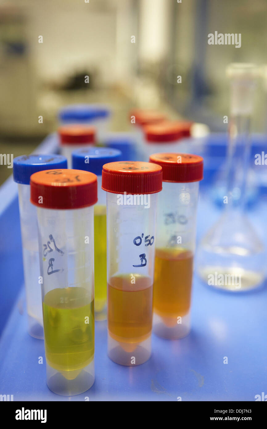 Chemical laboratory, materials research - Stock Image
