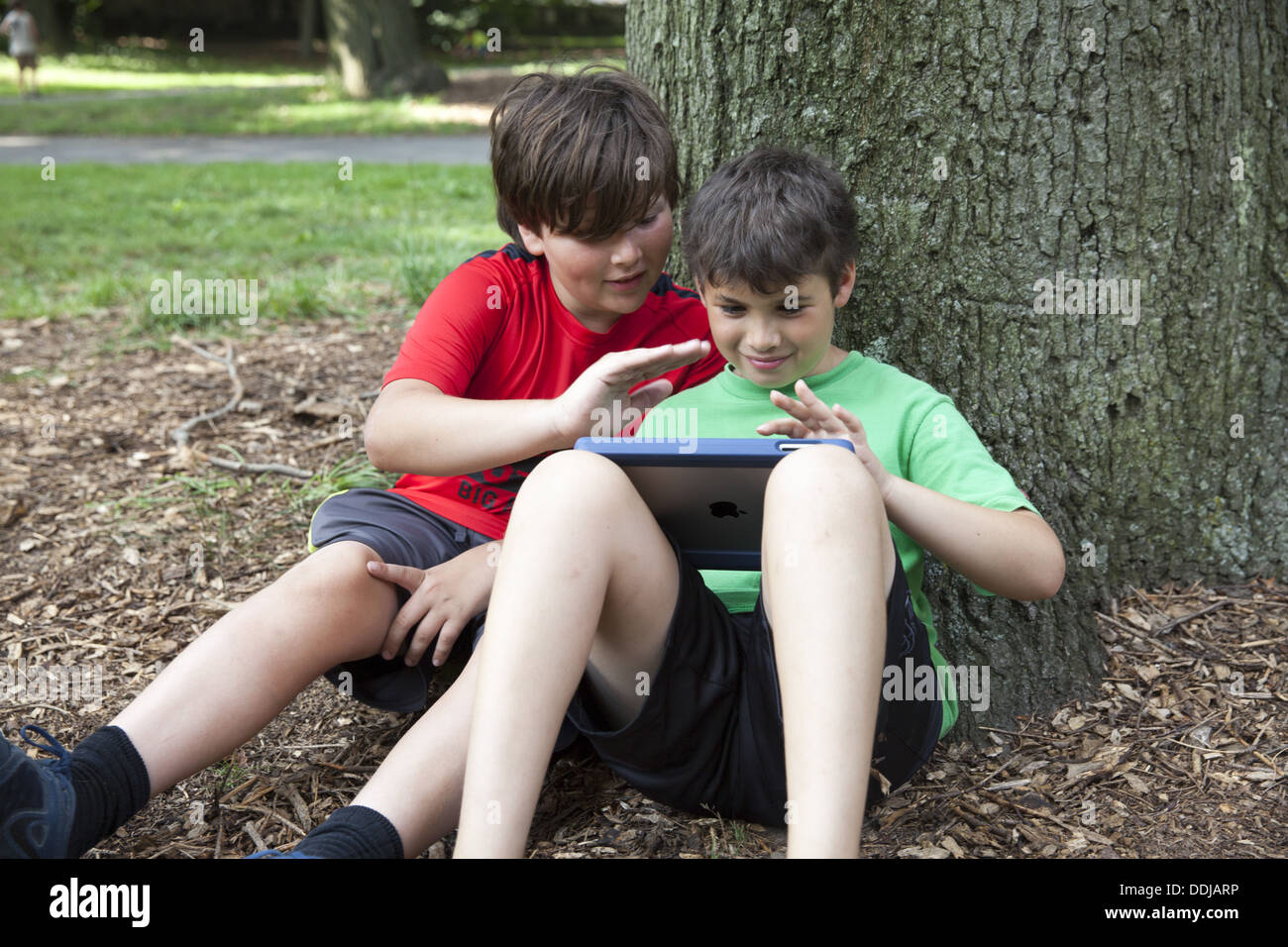 Two young friends playing a game on an ipad together in the park, Brooklyn, NY. - Stock Image
