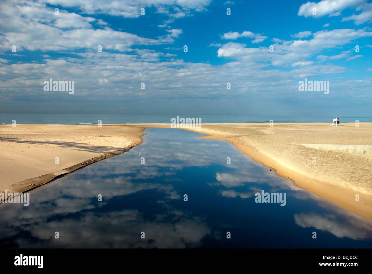 Indiana Dunes State Park Dog Beach
