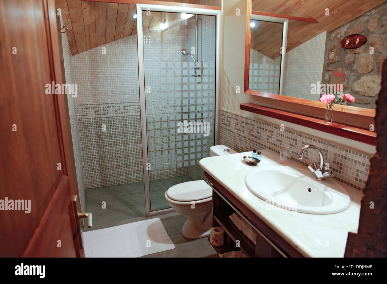 Guest room toilet in Relais de la Reine Lodge, Madagascar, showing shower cubicle, toilet and sink/vanity area - Stock Image
