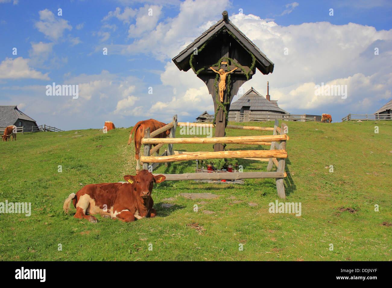Green alpine pastureland scenery - Stock Image