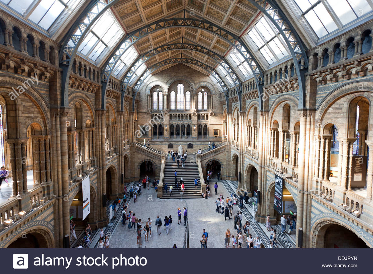 Inside the Natural History Museum, In London, England, U.K. - Stock Image