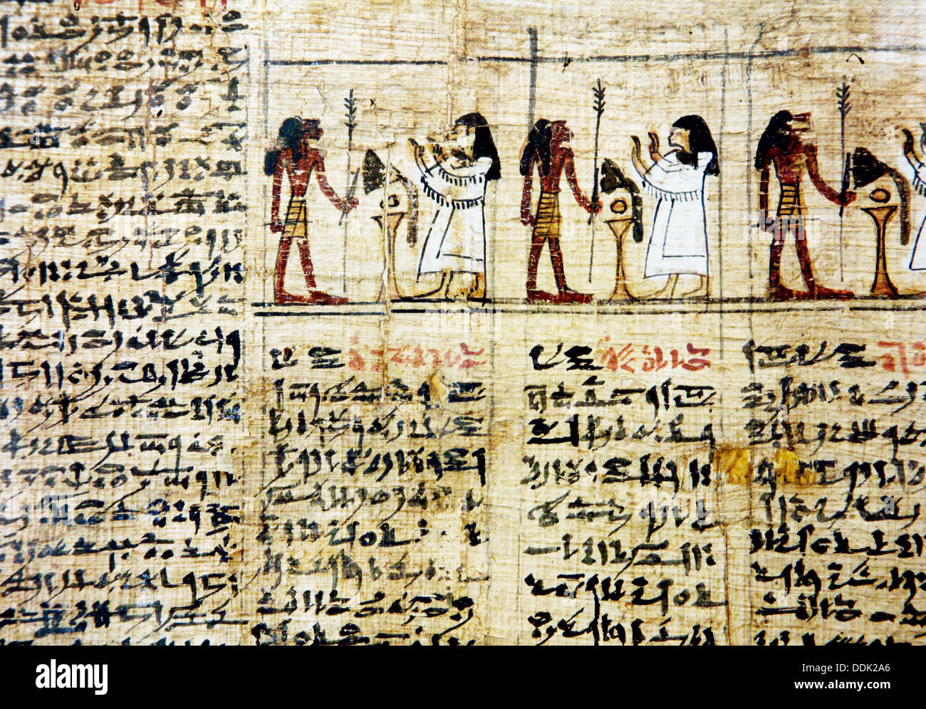 Detail of Book of Dead preserved at the Egyptian Museum of Torino. Italy - Stock Image