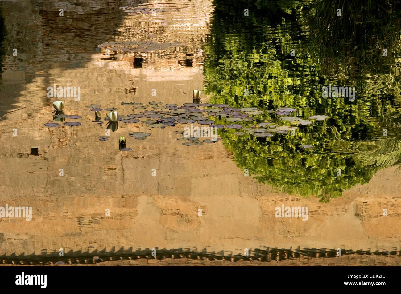 Reflexion at the Al-Mutasim Palace, inside the moorish Alcazaba of Almeria. Almería. Andalucia. Spain. - Stock Image
