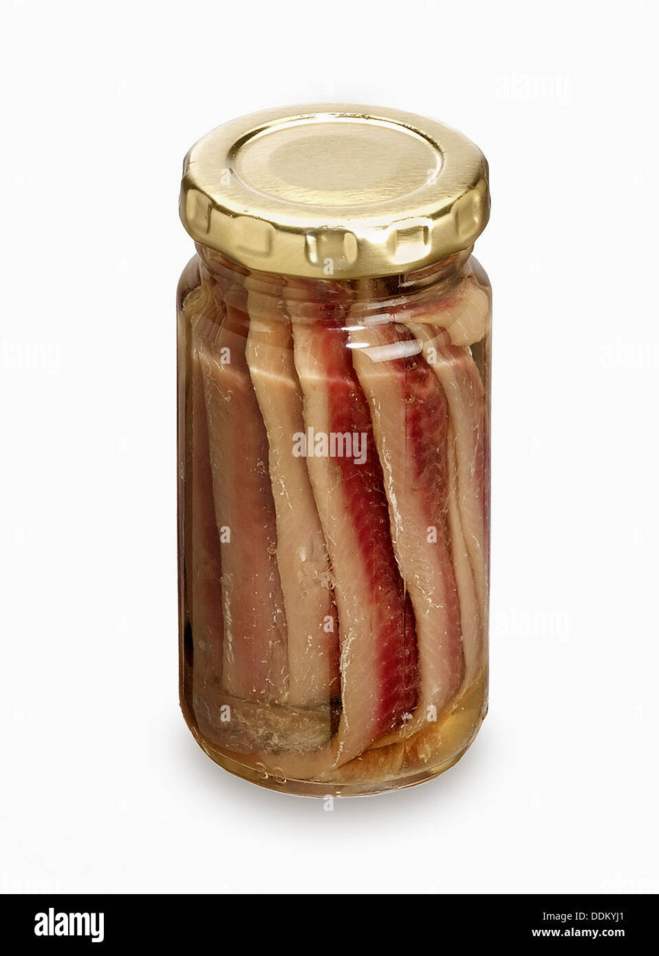 Anchovies - Stock Image
