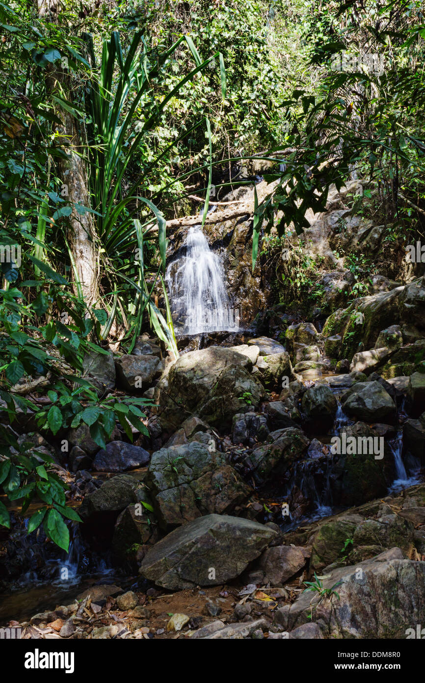waterfall in the tropical jungles of South East Asia - Stock Image