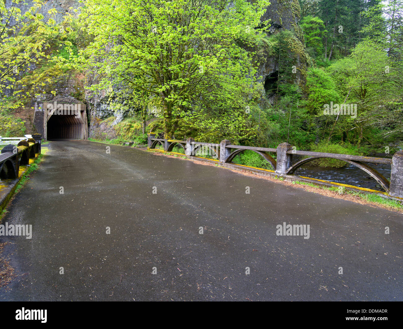 Old Columbia River Higghway and tunnel. Columbia River Gorge National Scenic Area. Oregon - Stock Image