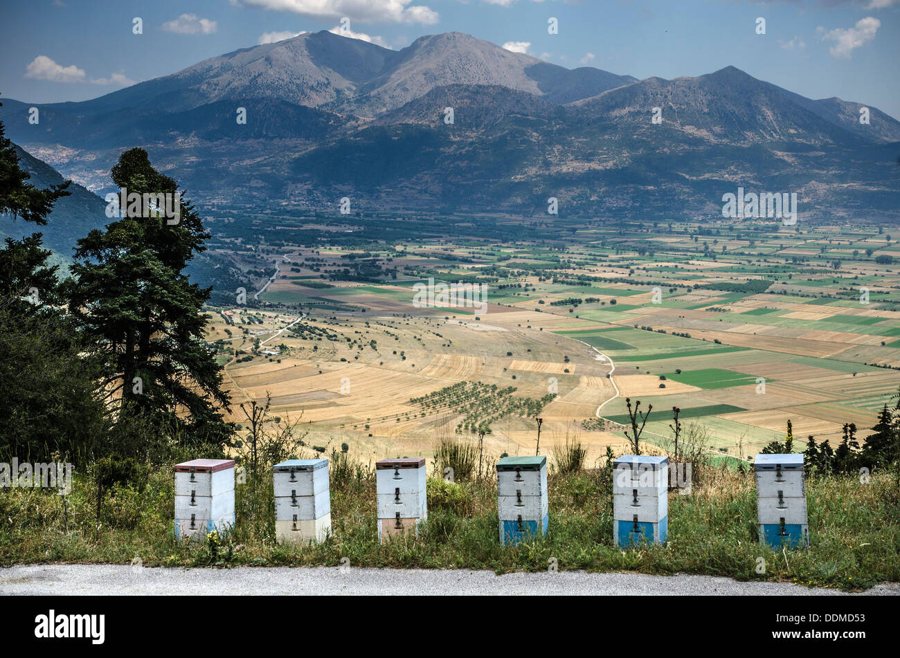 Beehives on the slopes above the Pheneos valley with Mount Kyllini (Ziria) in the background, Corinthia, Peloponnese, Greece - Stock Image