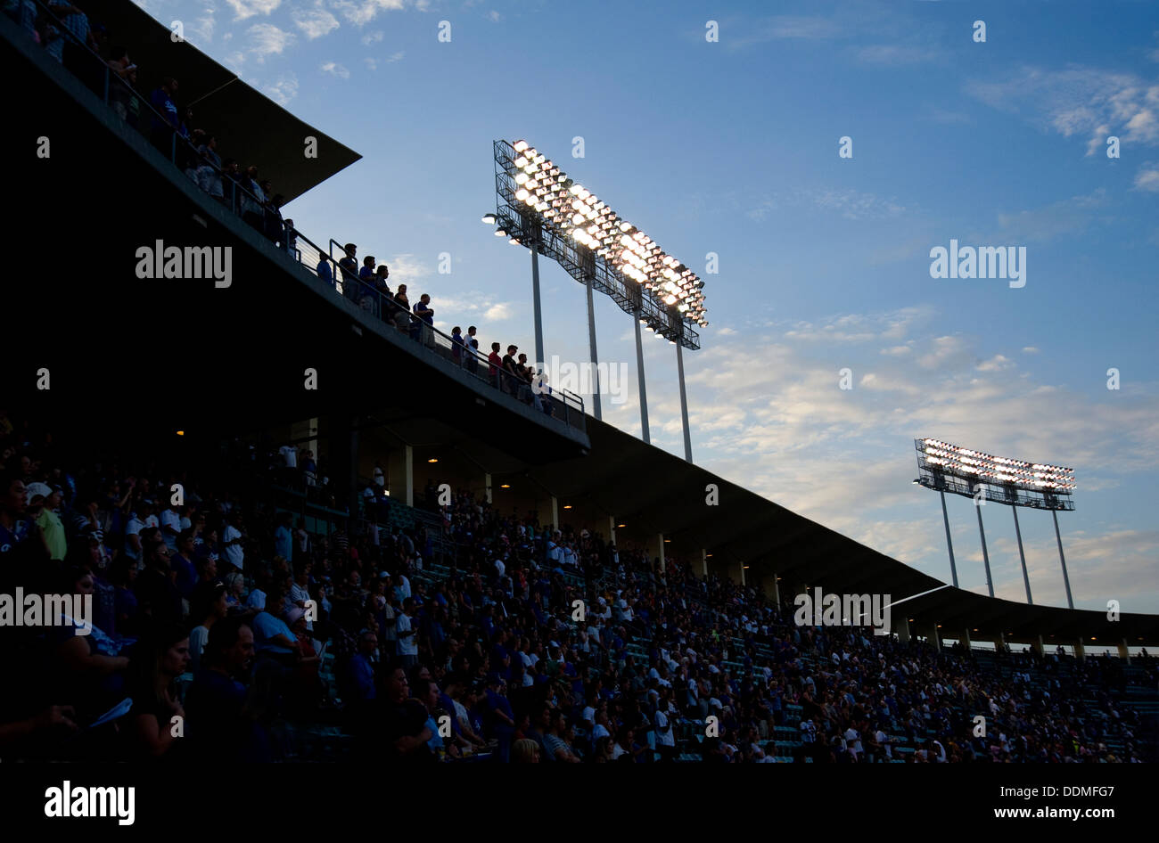 Fans at a sporting event - Stock Image