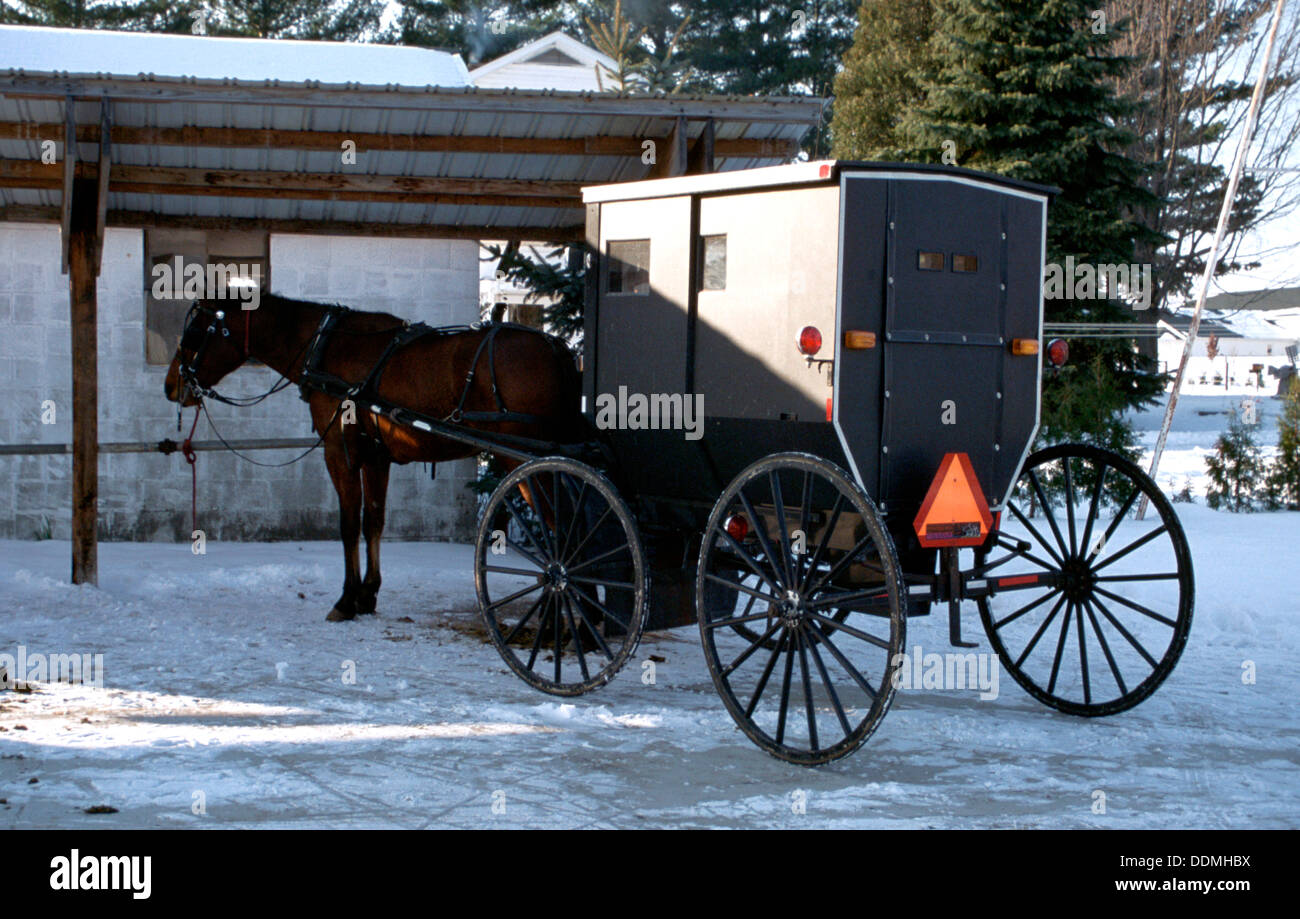 Amish horse-drawn buggy. Artist: SR Edmondson - Stock Image