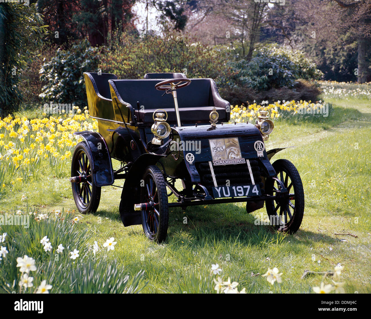 1903 Cadillac Model A. - Stock Image