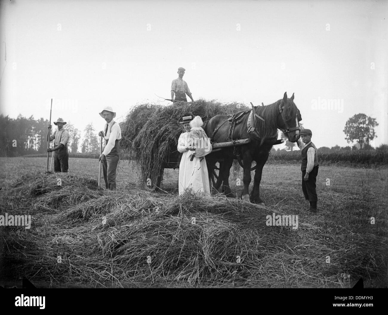 Farm labourers, Warden Hill, Northamptonshire, 1902. Artist: A Newton - Stock Image