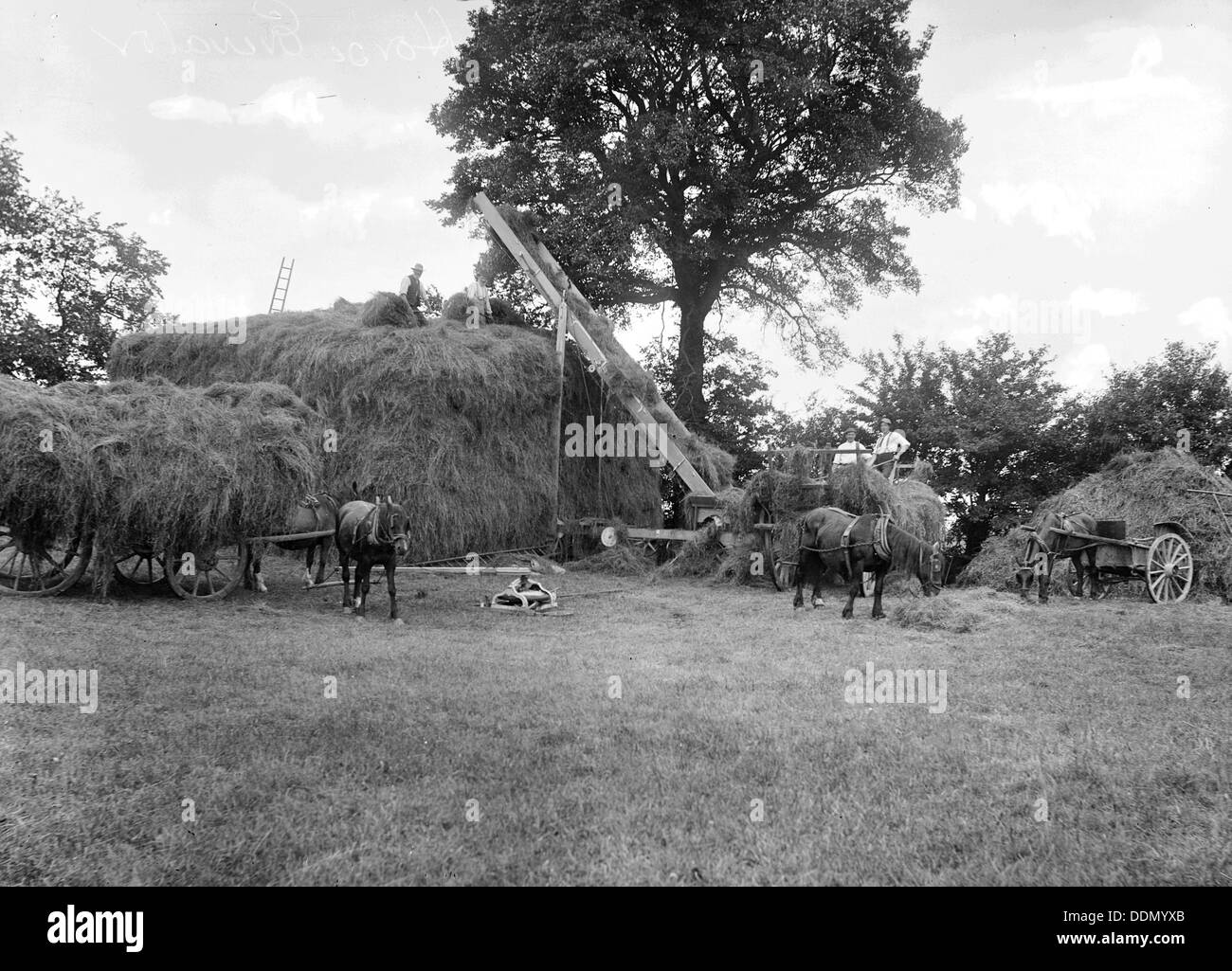 Men piling hay using a horse powered elevator, Stanford in the Vale, Oxfordshire, c1860-c1922. Artist: Henry Taunt - Stock Image