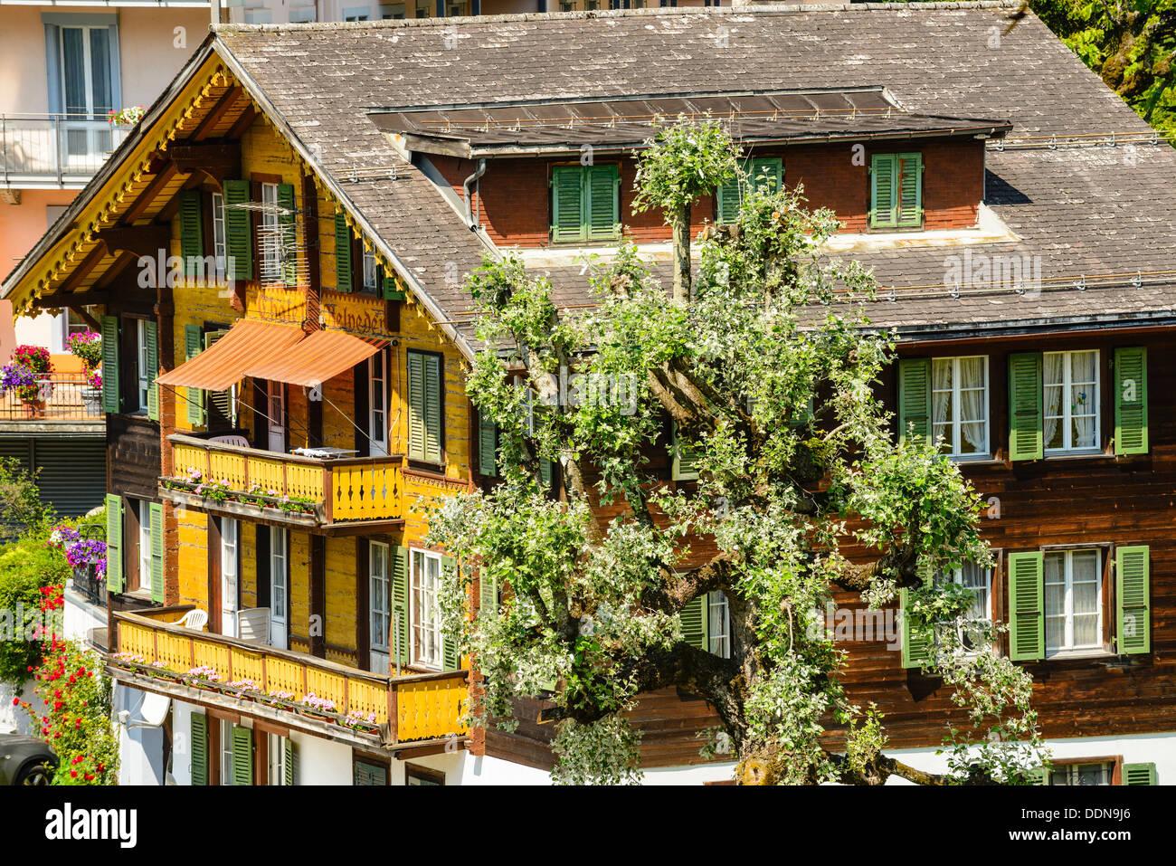 Chalet Belvedere Grindelwald Switzerland - Stock Image