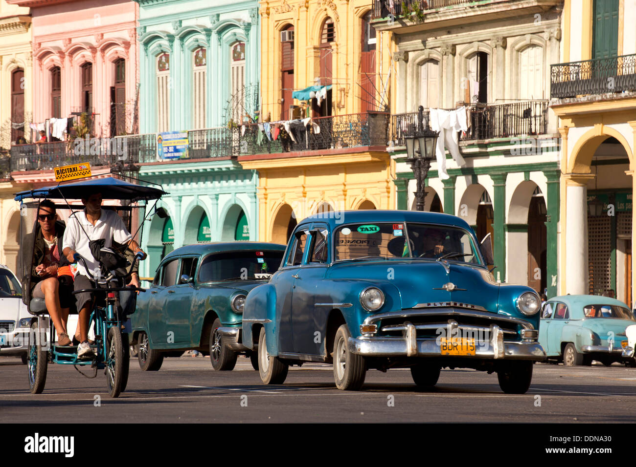 vintage US cars from the 50`s in the streets of Havana, Cuba, Caribbean - Stock Image