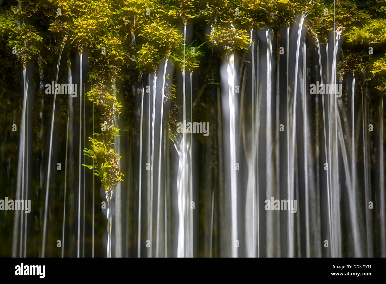 Wutachschlucht, Black Forest, Baden-Wuerttemberg, Germany, Europe - Stock Image