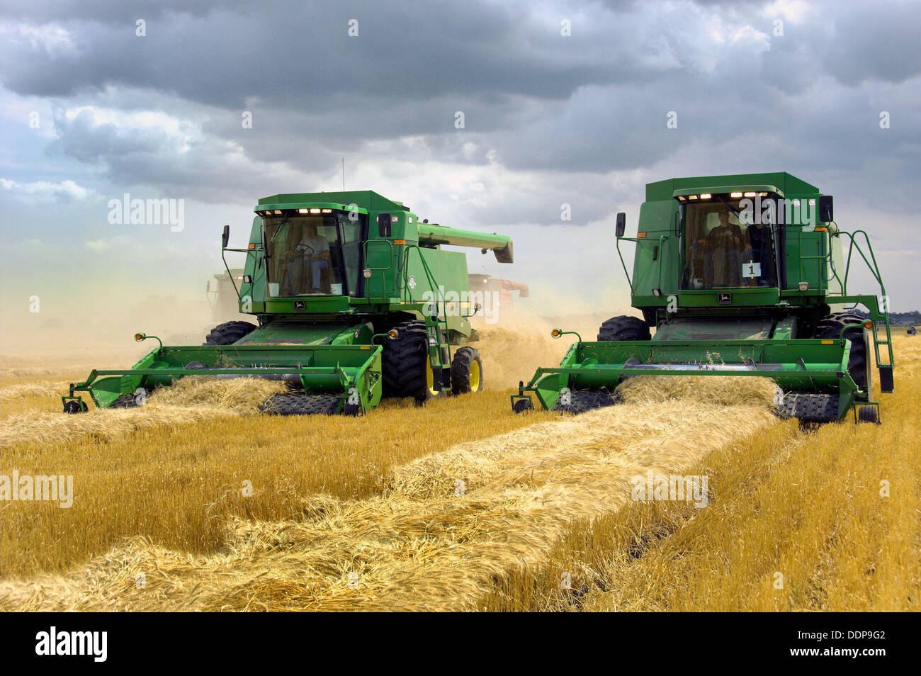 John Deere Combines Harvesting Wheat On A Field Near Winkler In Southern Manitoba Canada
