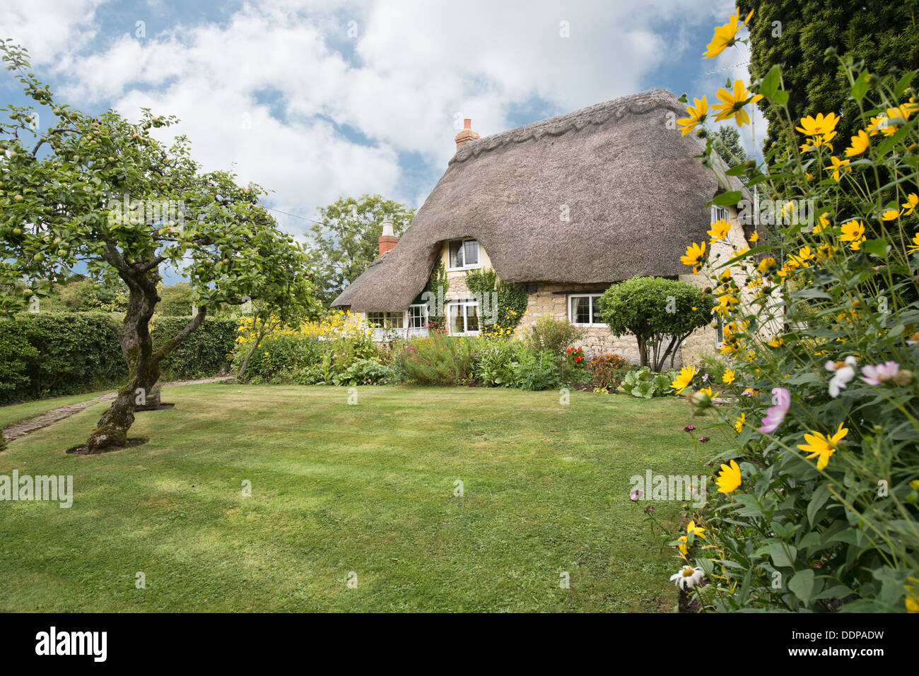 A beautiful traditional English country cottage with thatched roof & pretty garden in Purton, Wiltshire, UK - Stock Image