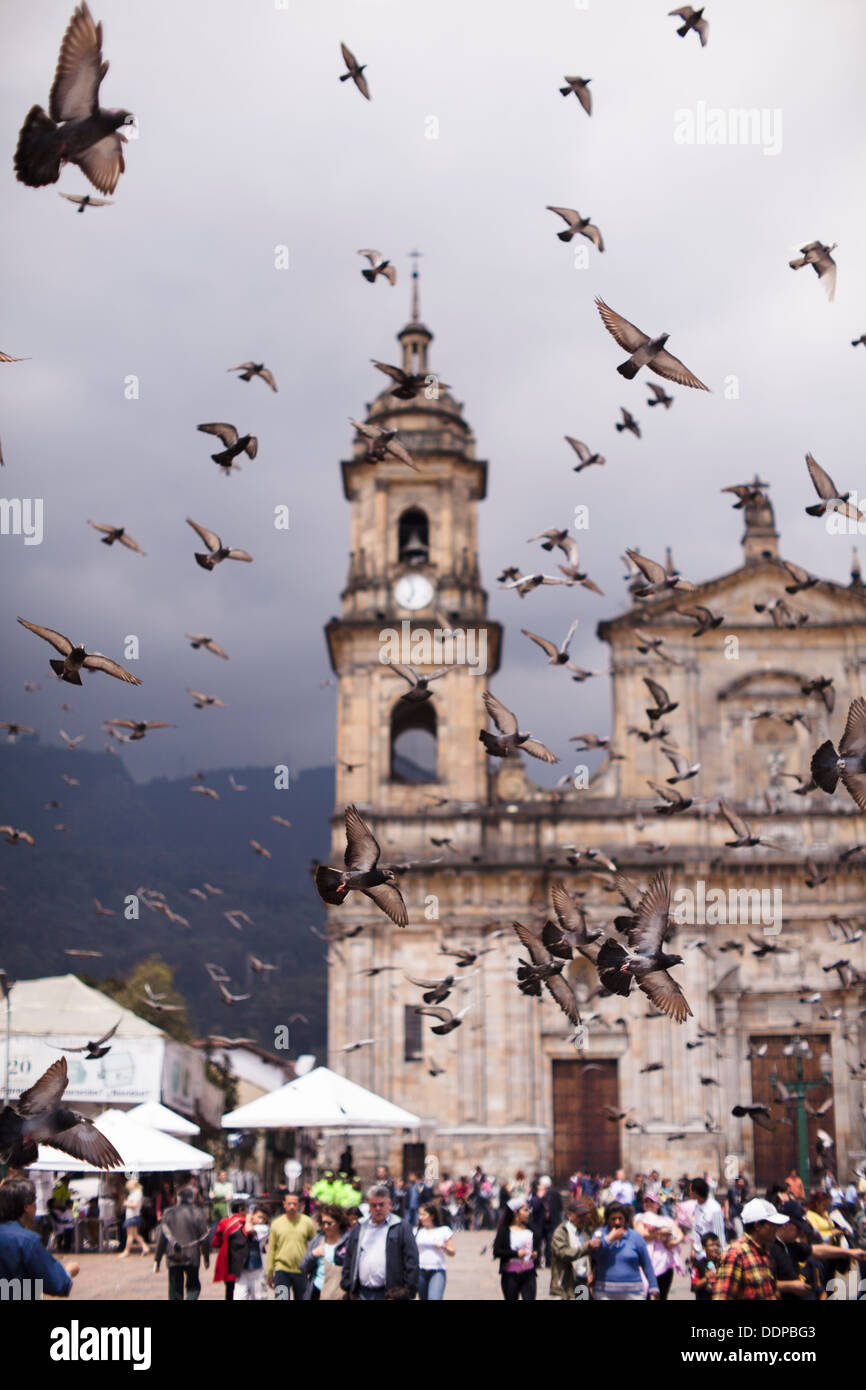 Center of Bogota, Colombia - Primary Cathedral in the Plaza Bolivar with doves in the sky. - Stock Image