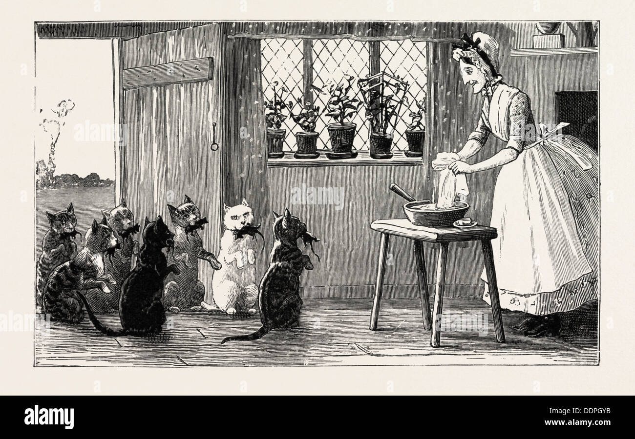 cats and mice, engraving 1890, engraved image, history, arkheia, illustrative technique, engravement, engraving, victorian, Arts - Stock Image