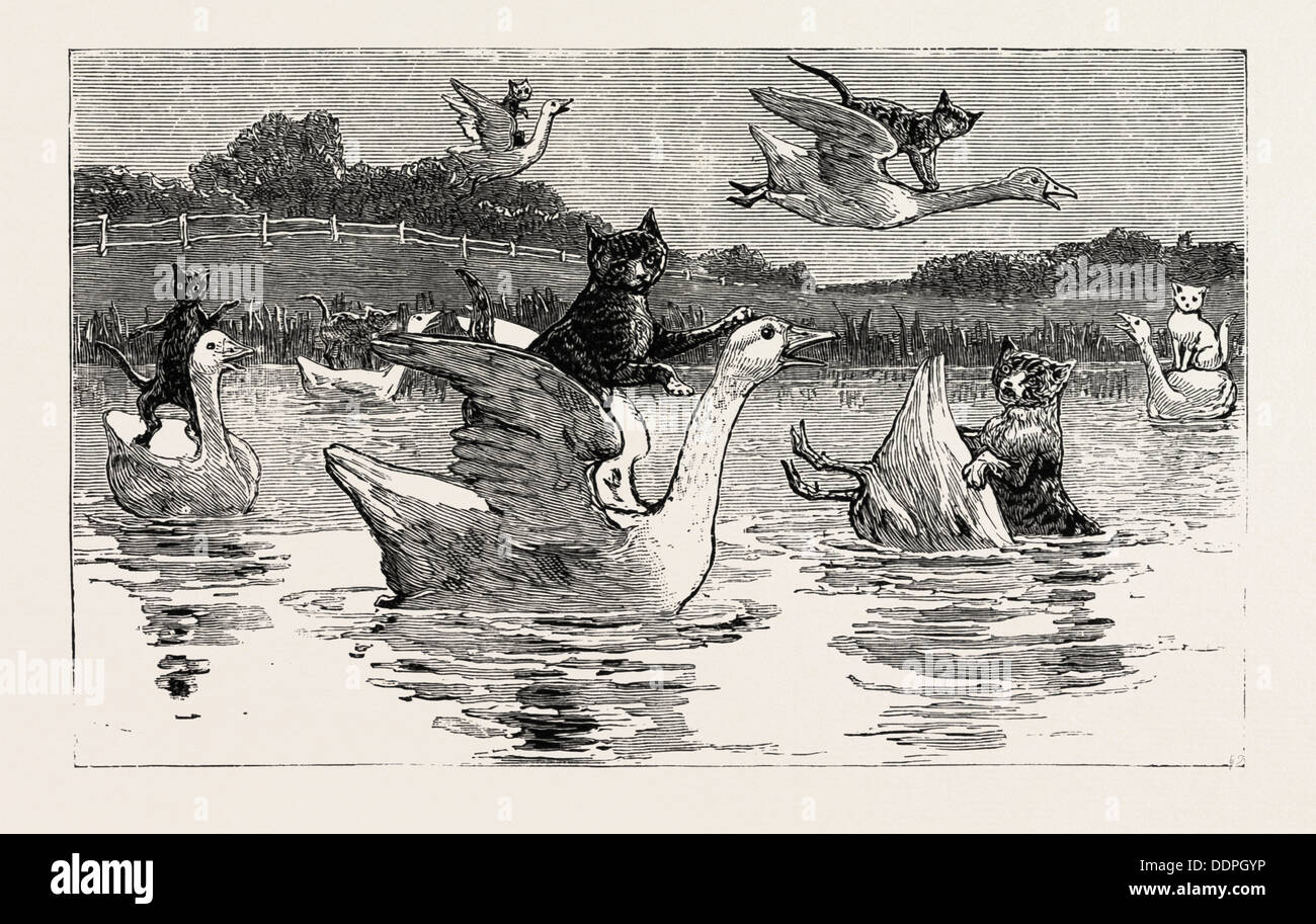 To show them his poultry, he turned them all loose, When each nimbly leaped on the back of a goose - Stock Image
