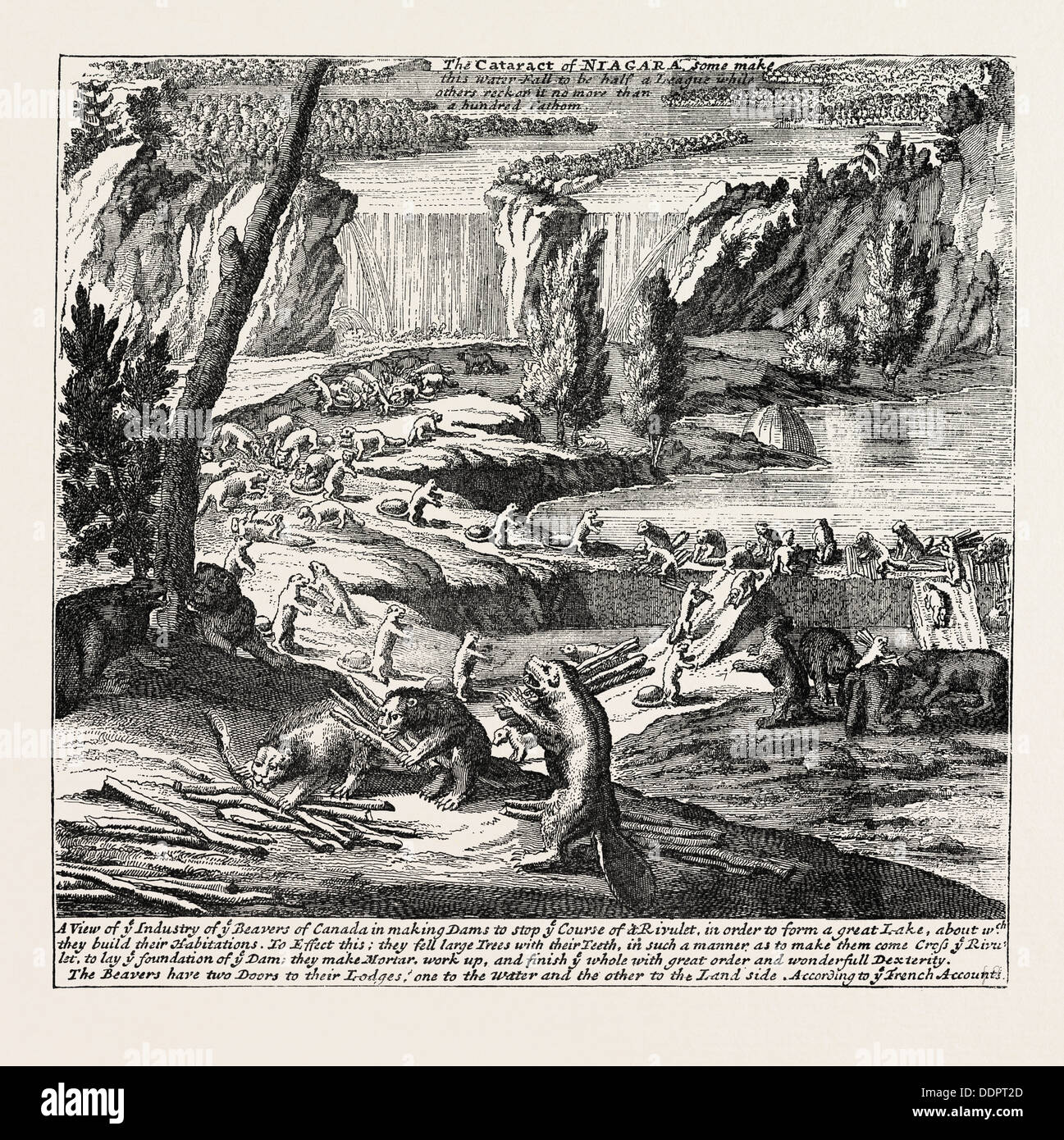 NIAGARA AND THE BEAVER DAMS. From Moll\'s New and Exact Map, 1715 ...