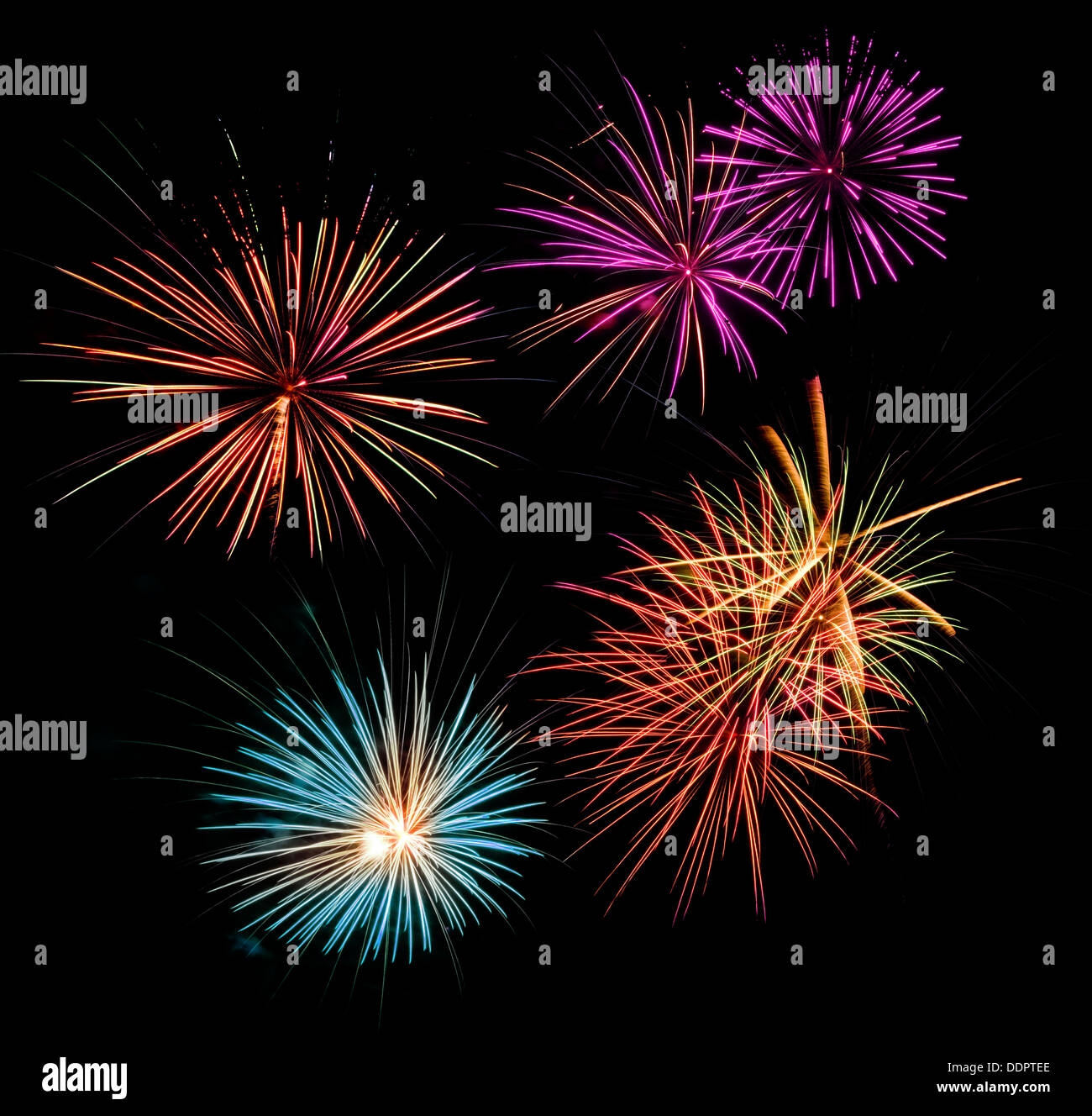 Multicolored fireworks display in a black night sky - Stock Image