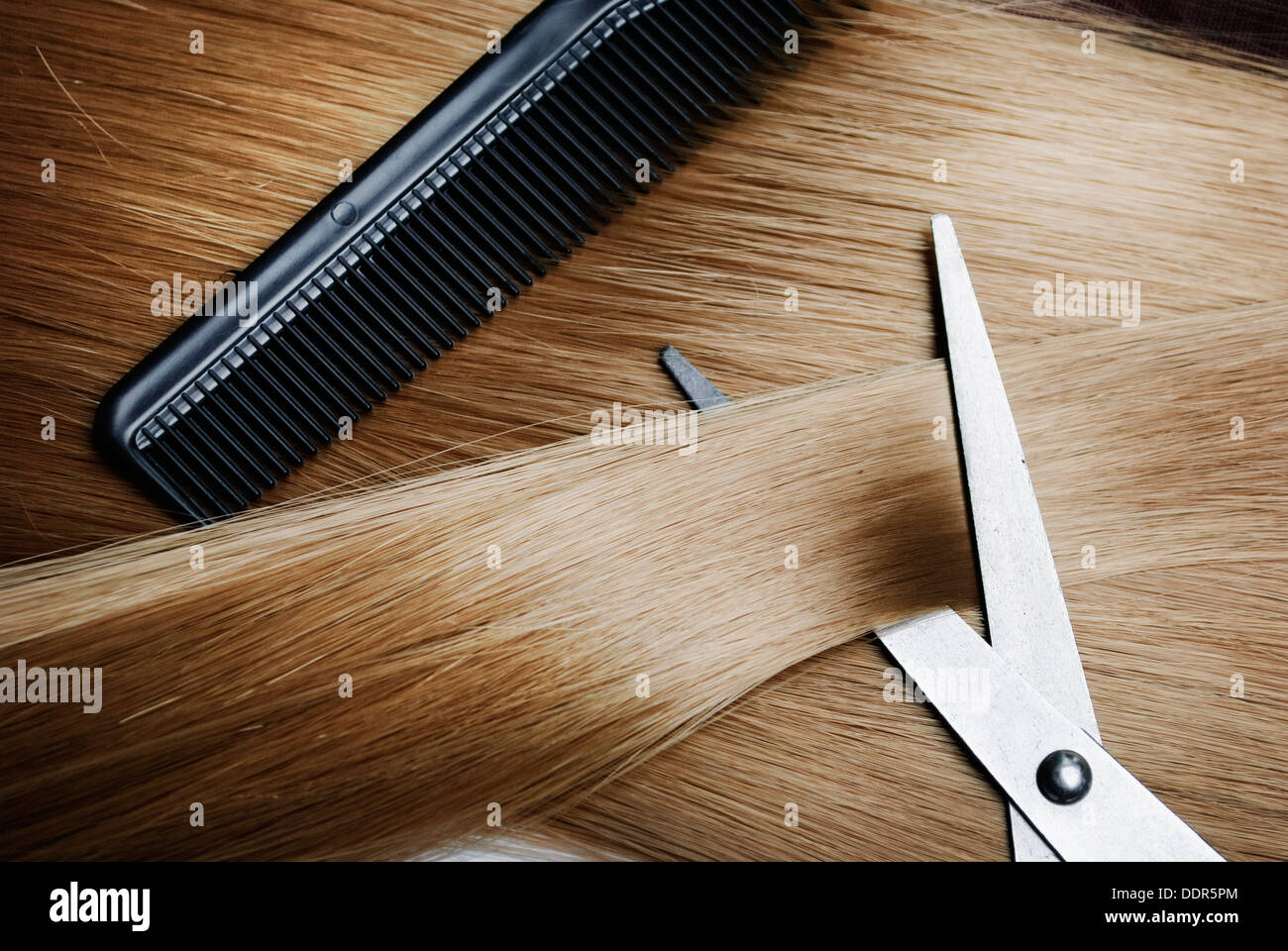 Long healthy blond hair and professional scissors - Stock Image