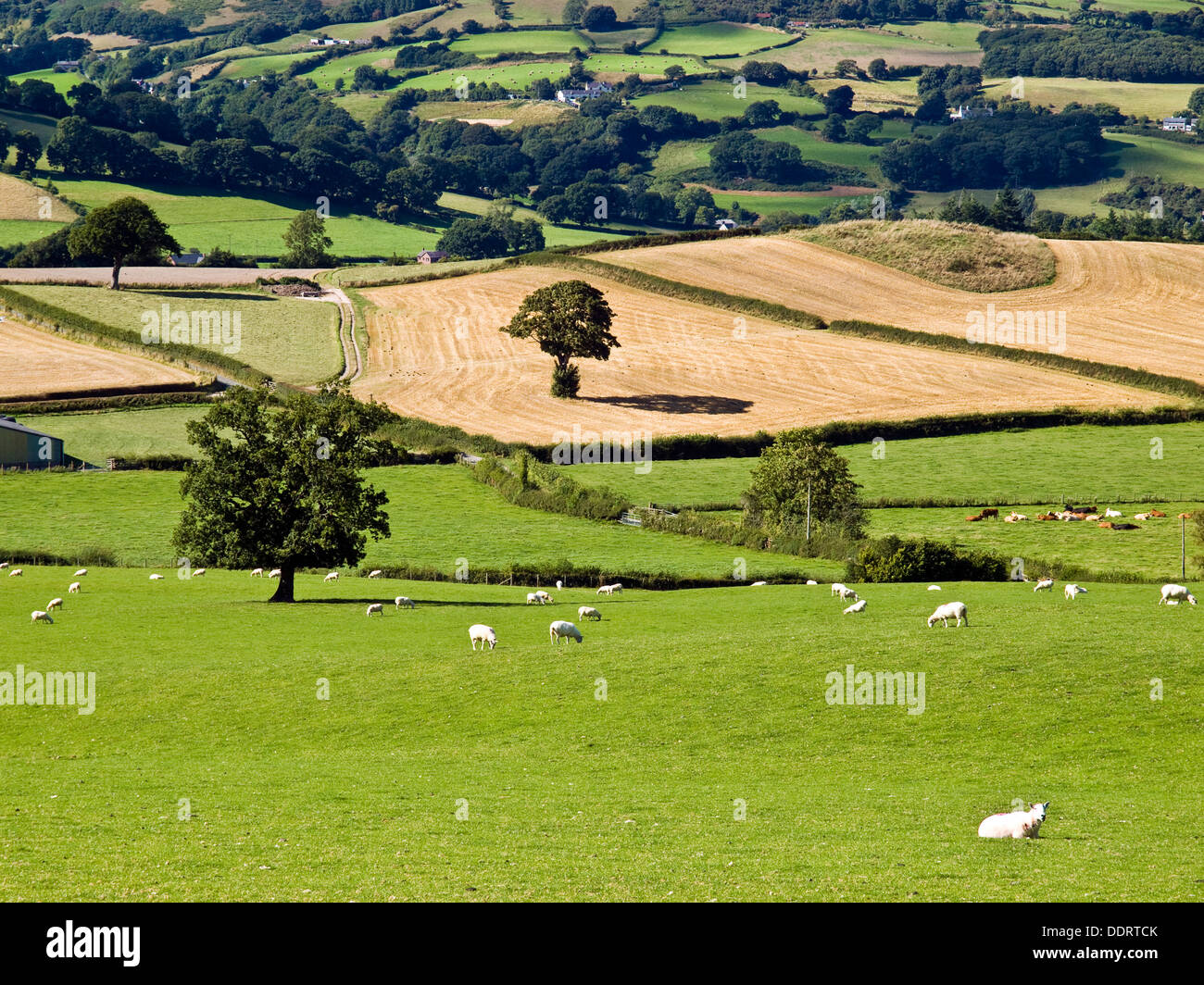 The Vale of Clwyd, Wales - Stock Image