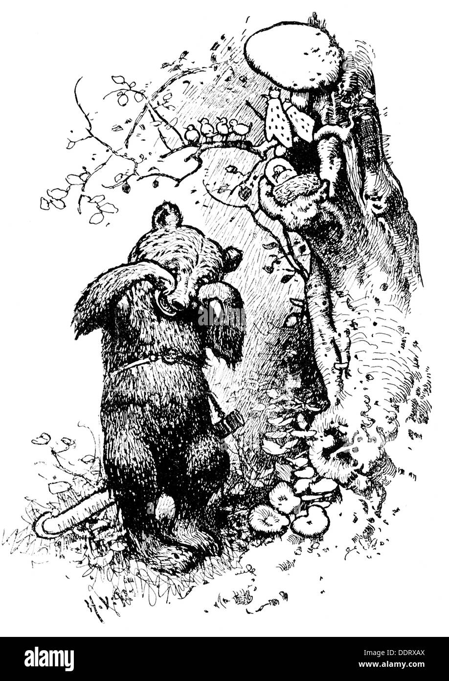 literature, fairy tales, Grimm Brothers, 'The Wren and the Bear', drawing by Hermann Vogel (1854 - 1921), from: 'Kinder- und Hausmärchen', 1894, Additional-Rights-Clearences-NA - Stock Image