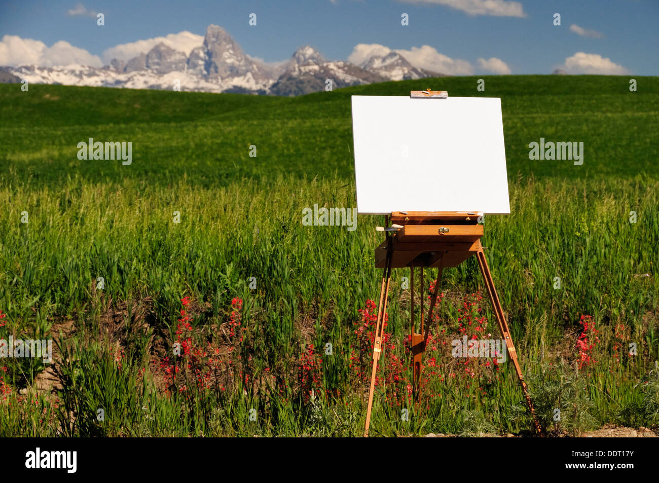 Easel in wildflowers overlooking green field and mountains - Stock Image
