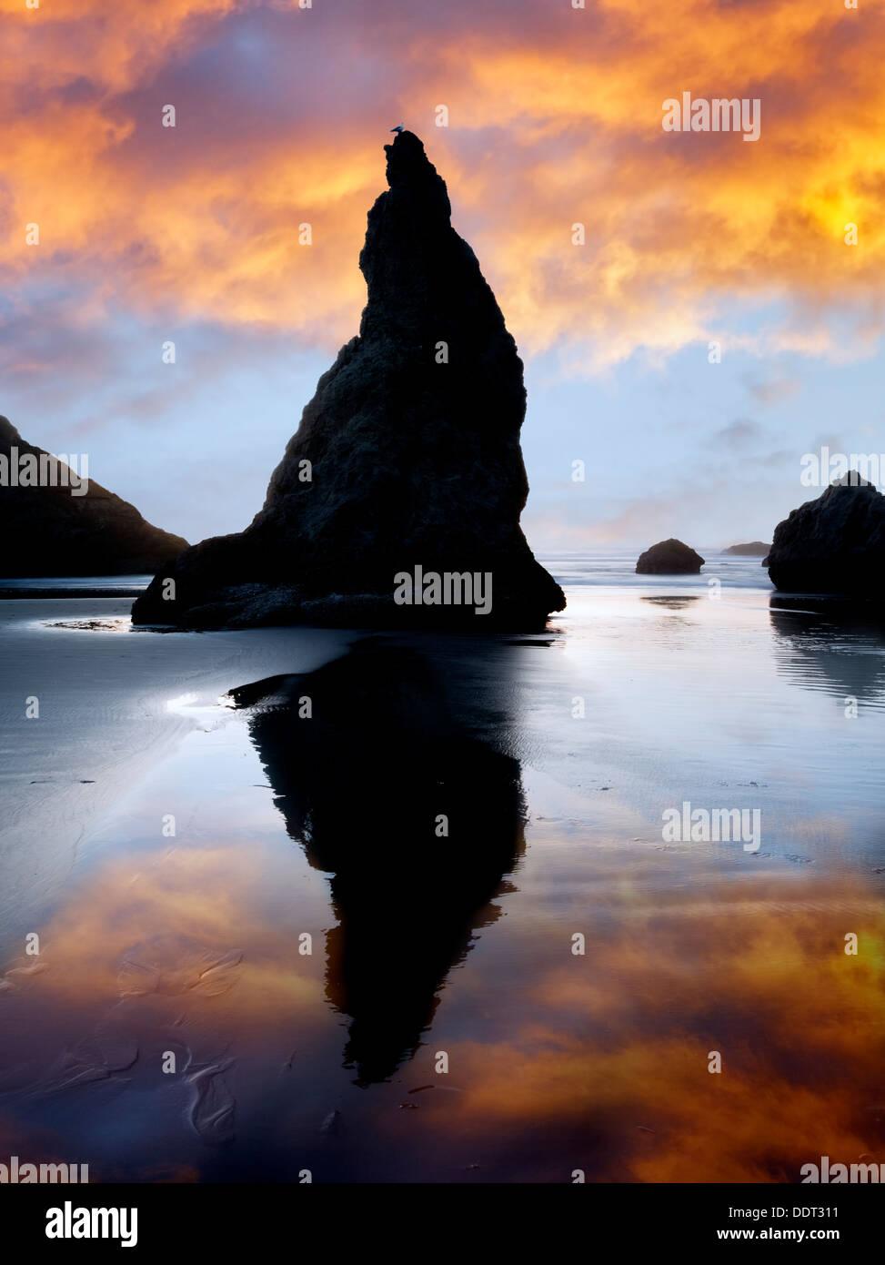 Rocks at Bandon with reflection at sunset. Oregon - Stock Image