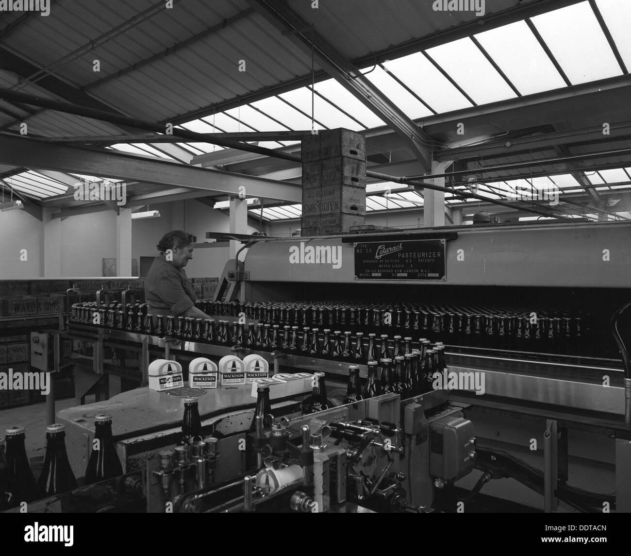 Bottling beer at Ward & Sons bottling plant, Swinton, South Yorkshire, 1961. Artist: Michael Walters - Stock Image