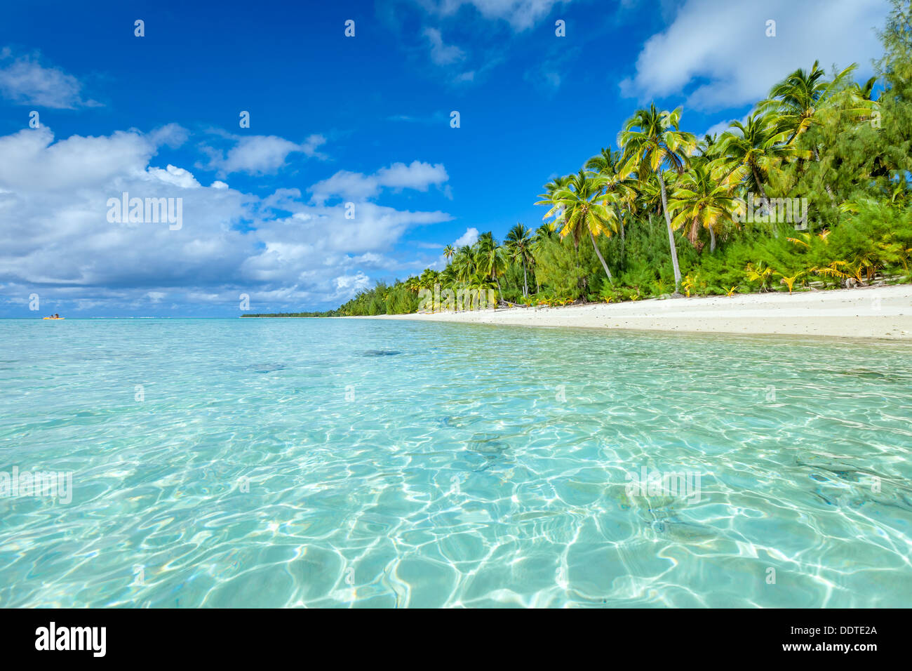 COOK ISLANDS, Aitutaki island, tropical sandy white beach with turquoise water and palm trees - Amuri beach, South Pacific - Stock Image