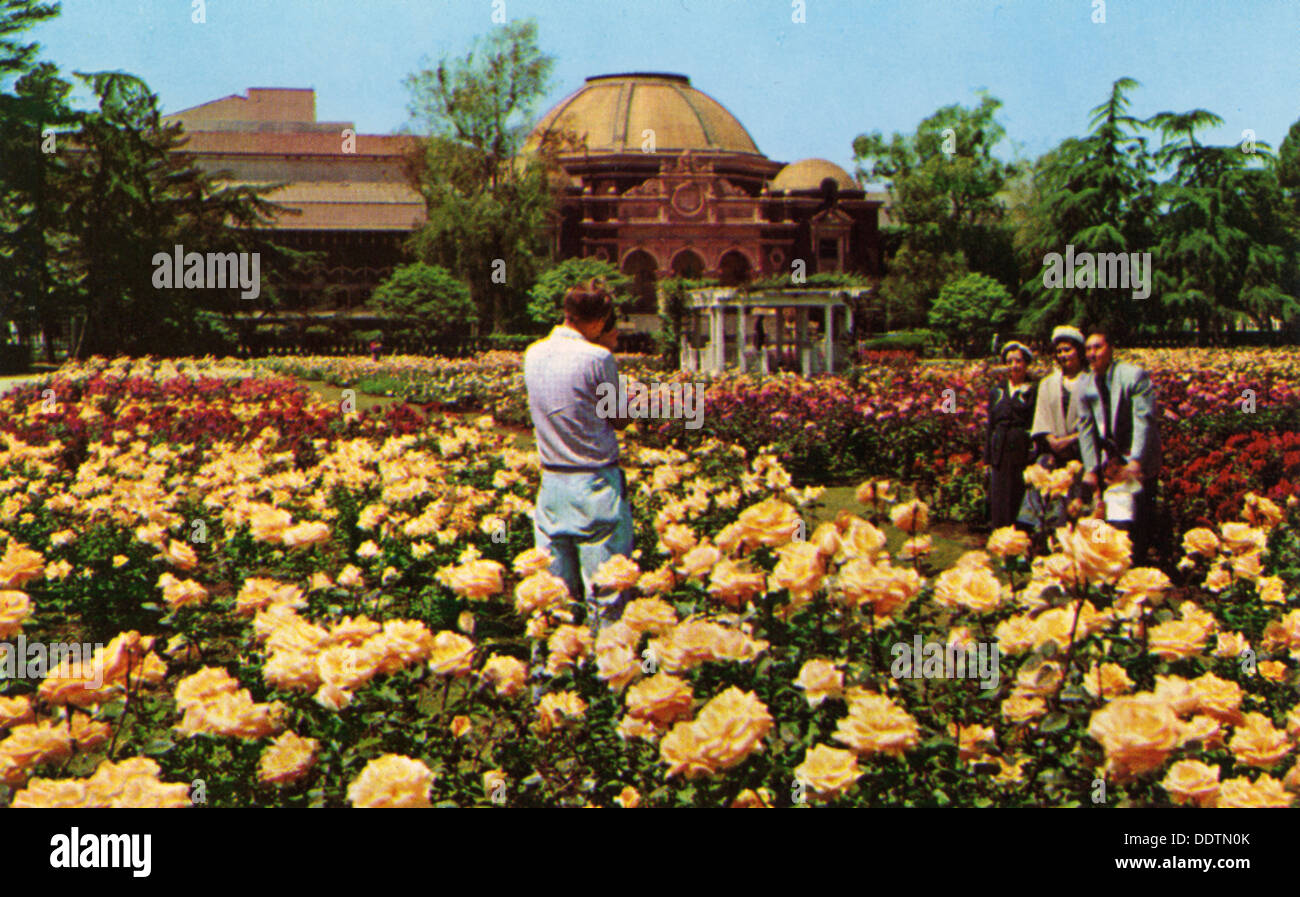 Rose Garden Exposition Park Los Stock Photos & Rose Garden ...