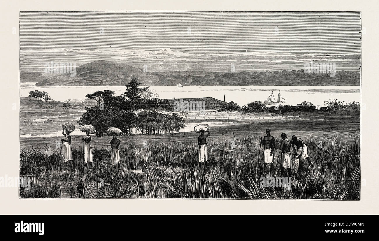 AN ENGLISH TRADING SETTLEMENT AT EMBOMA, CONGO RIVER, COAST OF AFRICA - Stock Image