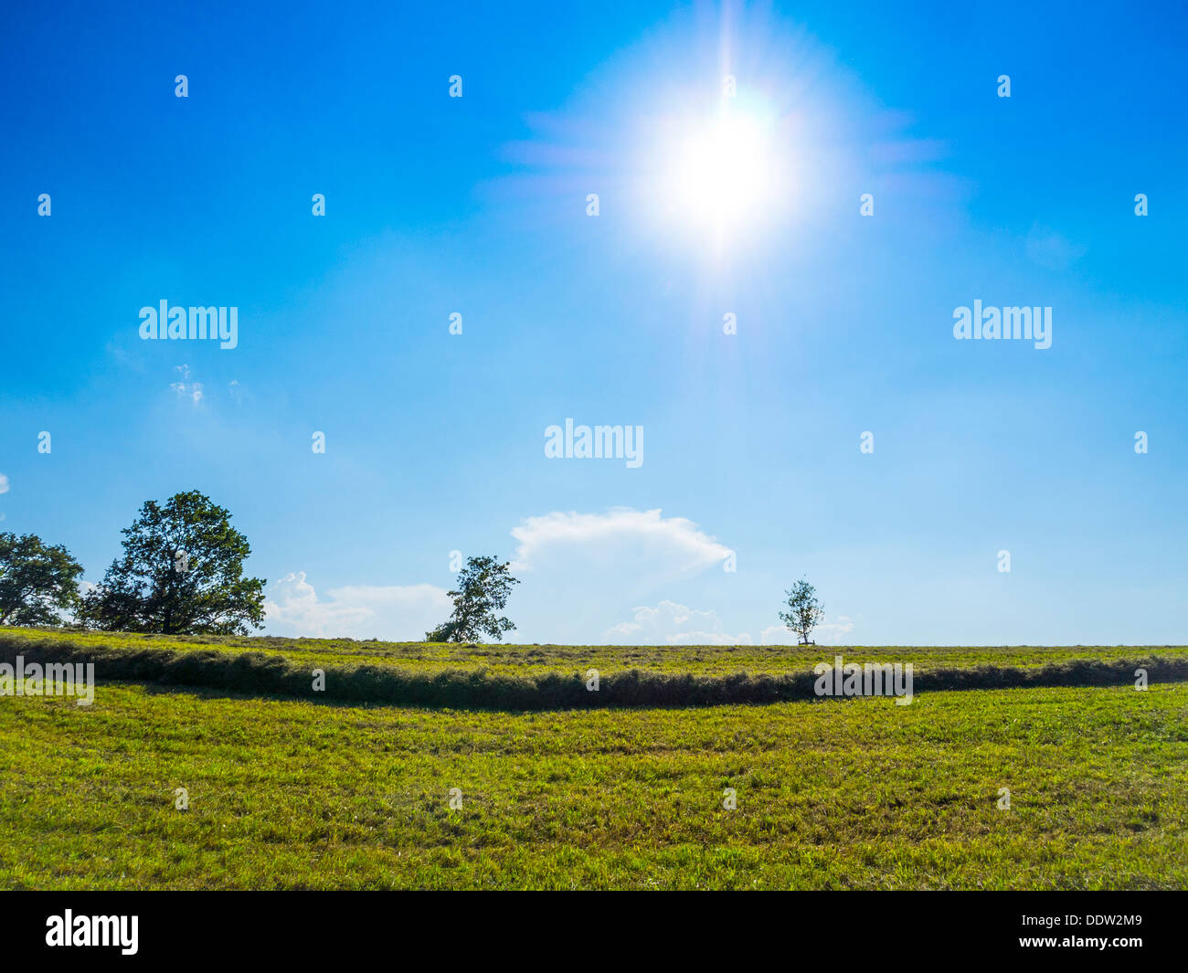 Green grass an blue sky with sun and clouds for background - Stock Image