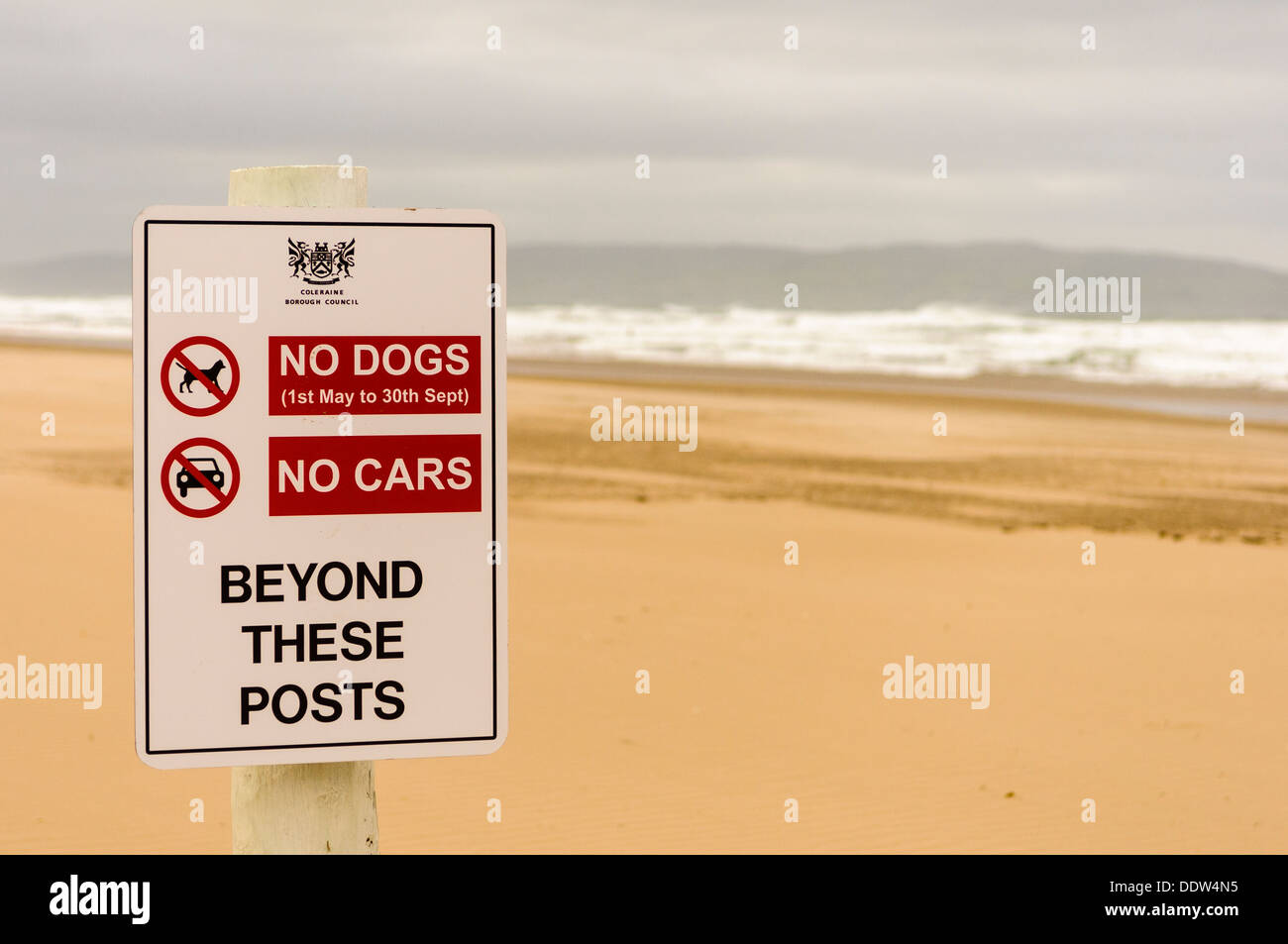 Sign on a beach warning that no dogs or cars are permitted beyond this point. - Stock Image