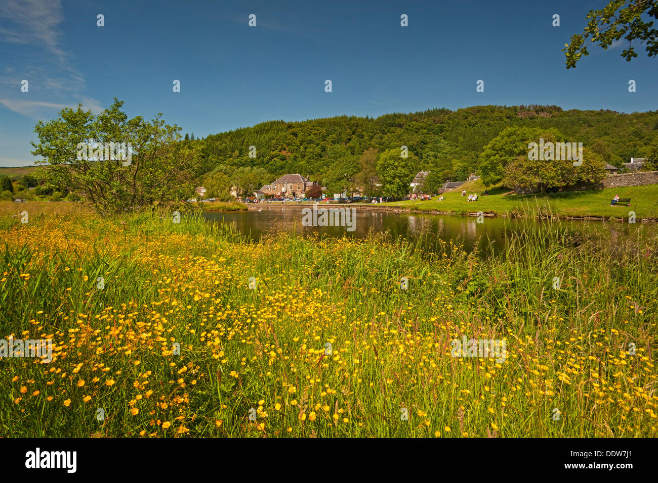 Callander from the Meadows - Stock Image