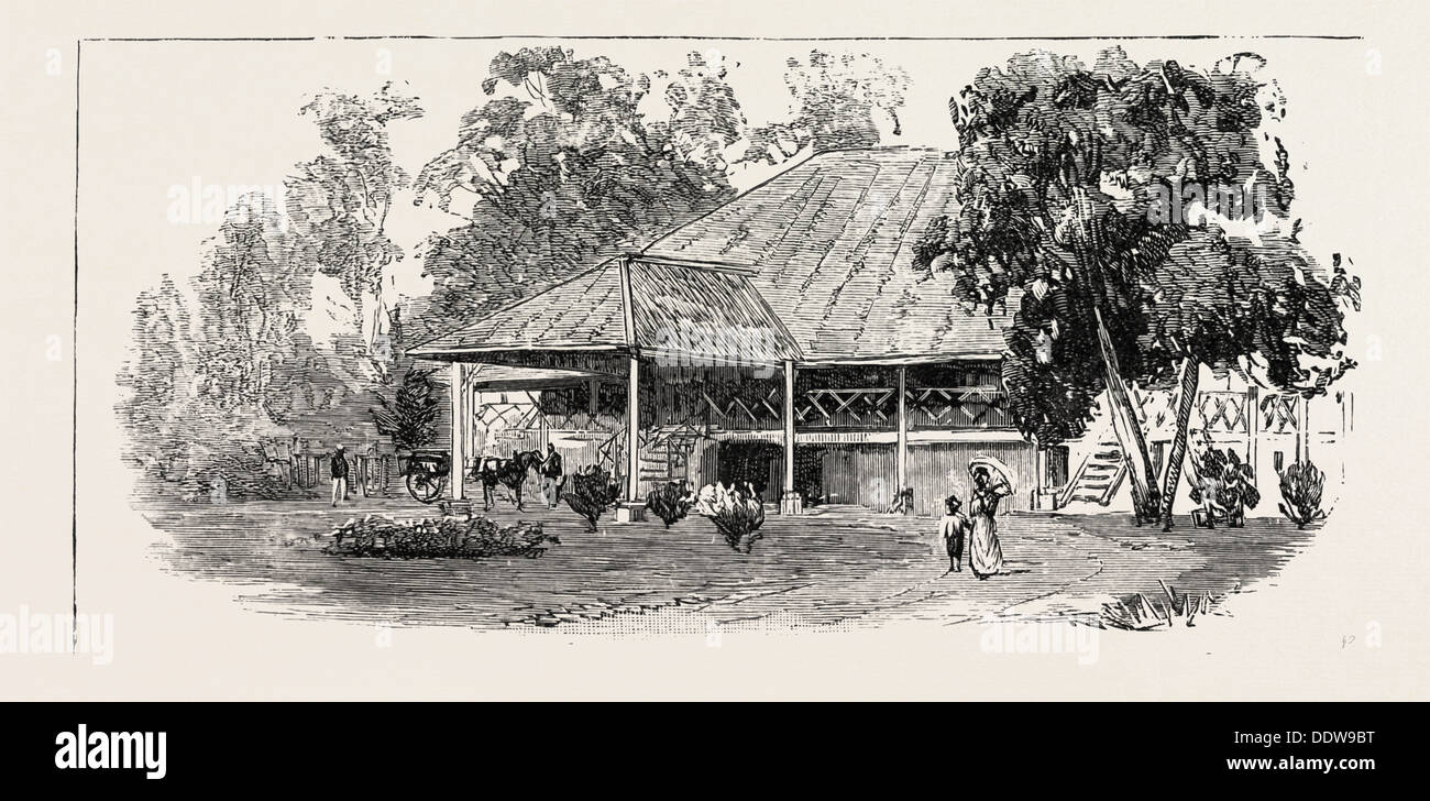 THE CULTIVATION OF TOBACCO IN SUMATRA, INDONESIA: A PLANTER'S HOUSE, 1890 engraving - Stock Image